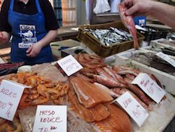 Lifelong learning about Croatian fish