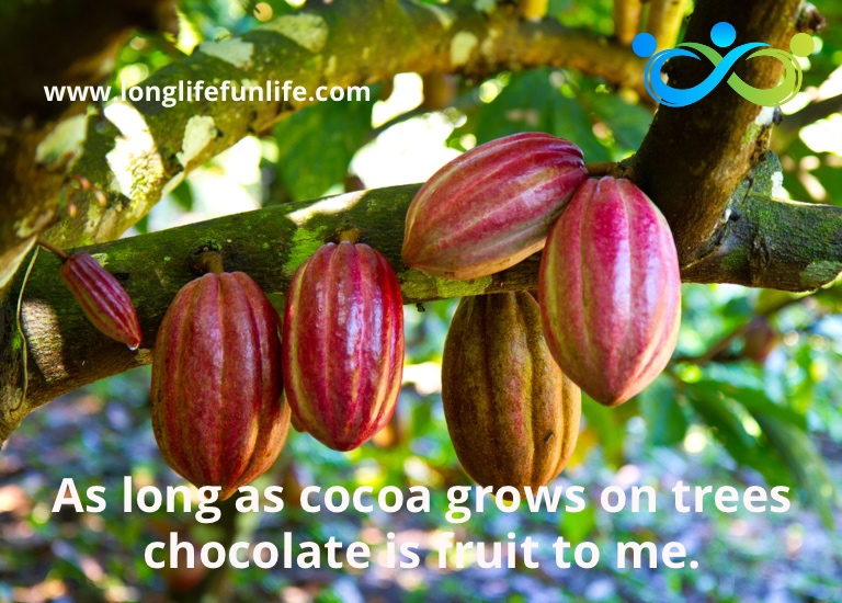 Picture of cocoa beans growing on cacao tree with caption that chocolate is a form of fruit